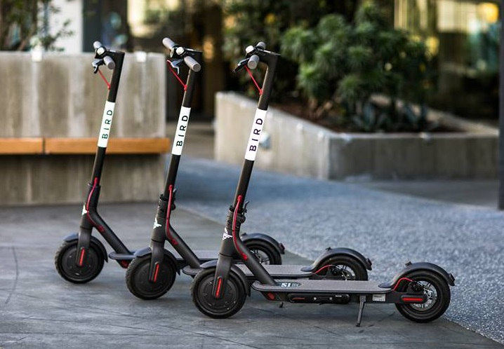 three bird scooters